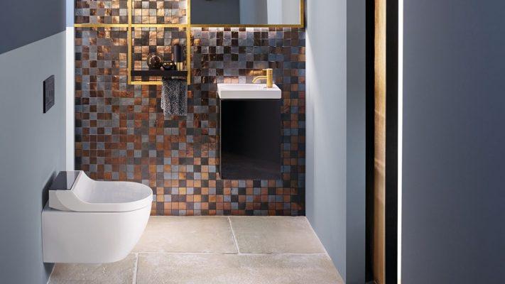 The Bathroom Company Geberit Toilets
